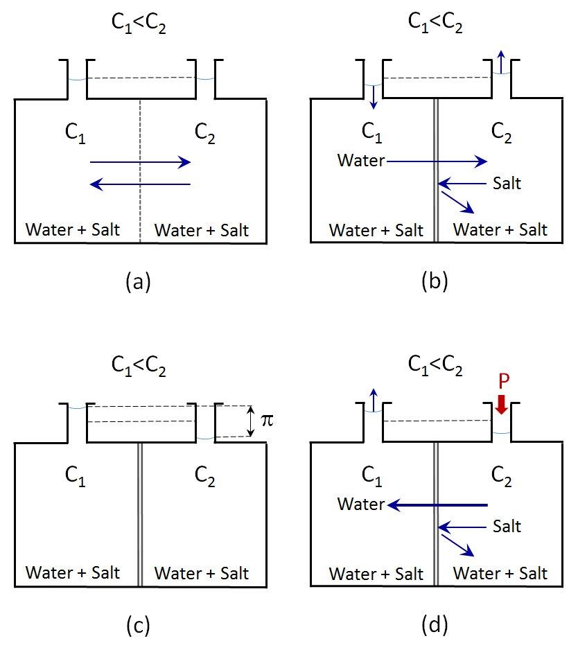 Reverse osmosis fundamentals