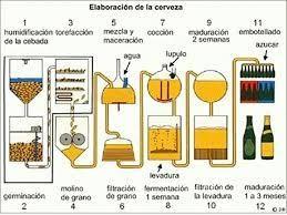 cerveza-4
