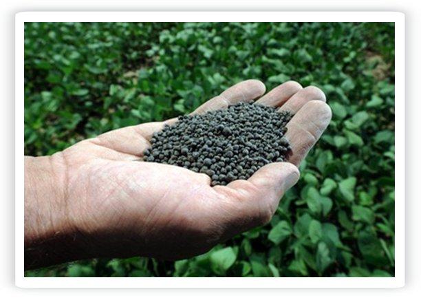 lodos fertilizantes