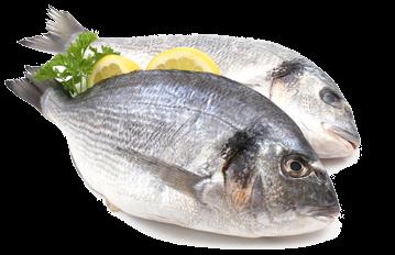 pescados-mariscos-a-domicilio1