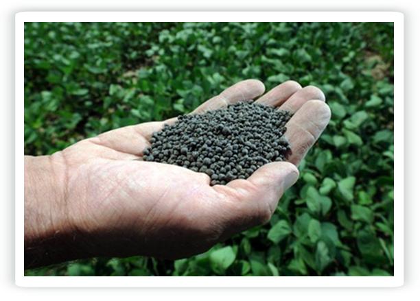 Slurry fertilizer