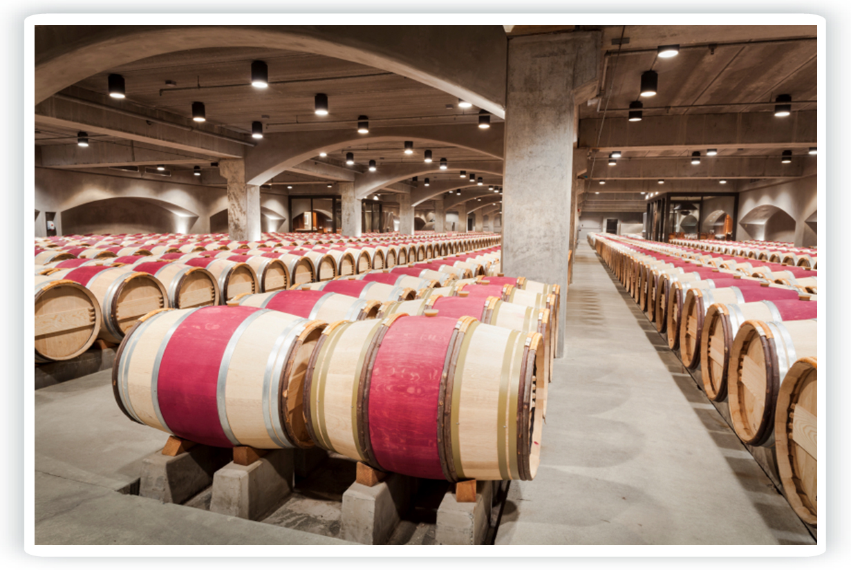 Winery wastewater - Wine industry wastewater treatment