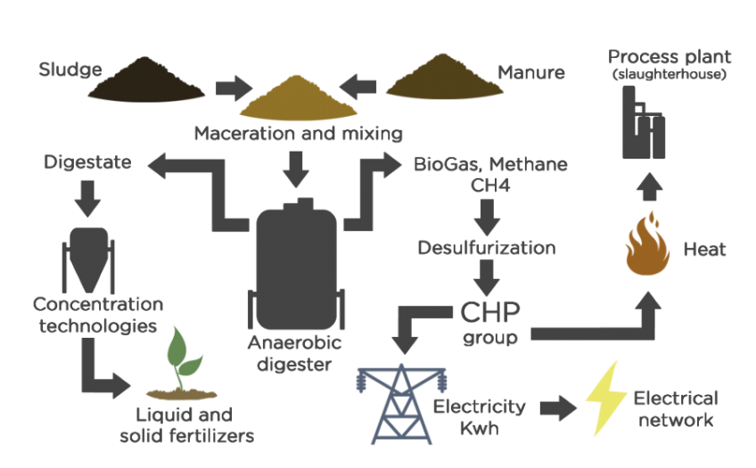 ENVIRONMENTAL AND PROFITABLE SOLUTIONS FOR WASTE TREATMENT IN CHICKEN FARMS